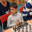 Студия шахмат